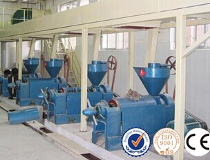 Factory price small coconut oil mill machinery automatic 10-50TP