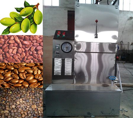 Stainless steel food grade olive hydraulic cold press oil machine