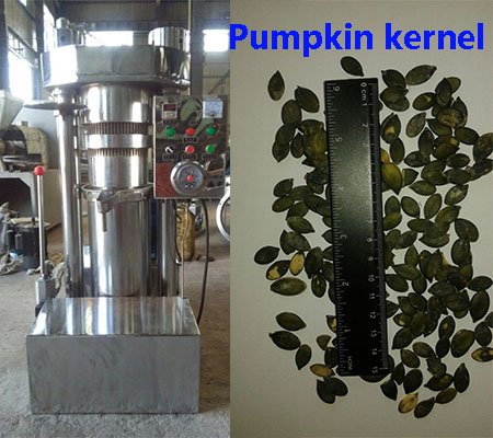 6YZ-280 capacity 90kg pumpkin seeds avocado hydraulic oil press machine